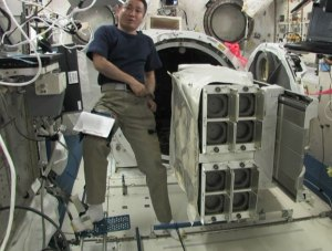 Koichi Wakata KC5ZTA installing CubeSat deployers on the Multipurpose Experiment Platform inside the Kibo laboratory of the ISS