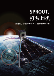 SPROUT in orbit